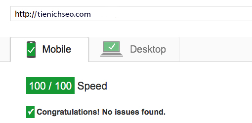 google pagespeed insight Hướng Dẫn Tối Ưu Website Đạt 100/100 Google PageSpeed Insights
